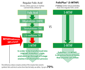 FolicPlus graphic